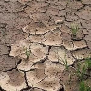 土壤八大问题及如何解决土壤问题